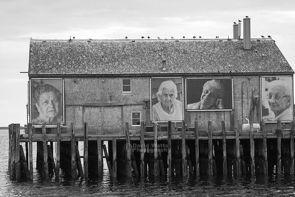 Provincetown Dock Portraits