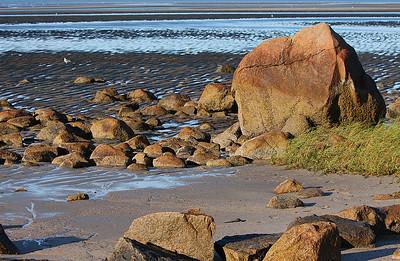Brewster seashore