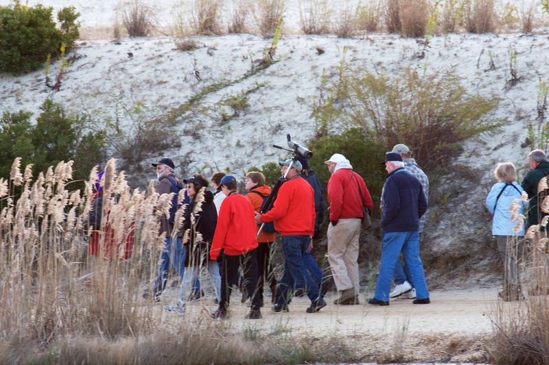 The area regularly draw large crowds as it is one of top place for bird watching.