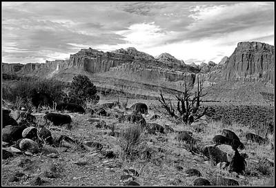 1972 Capital Reef National Park, Utah