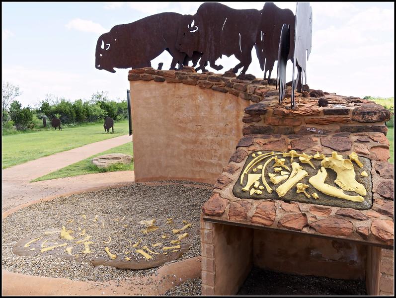 Bison Model at Overlook