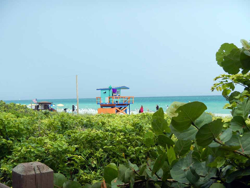 Miami Beach, Florida. We arrive in the afternoon, the day before we're to set sail. Our hotel is on the beach!