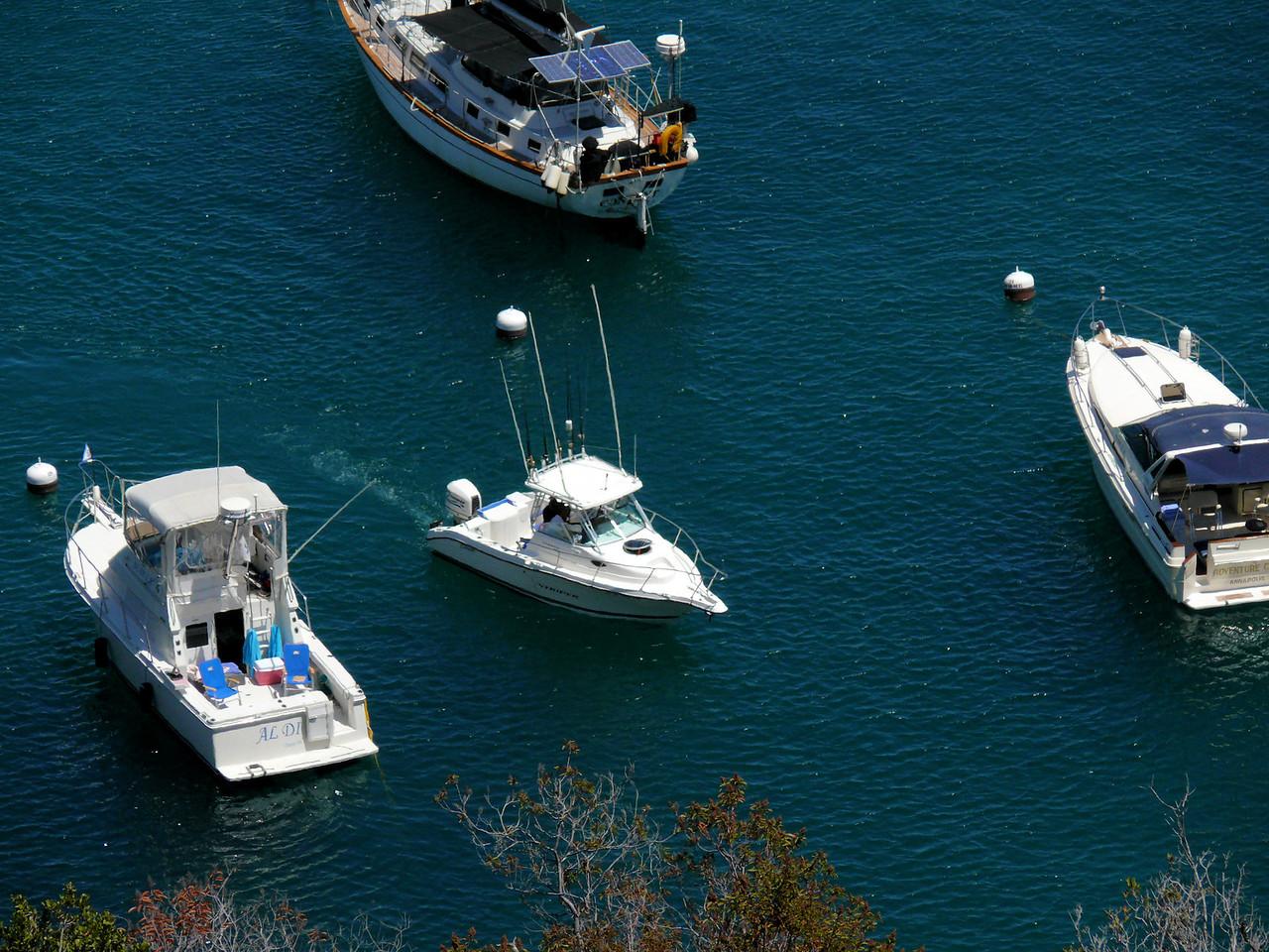 Harbor Baots