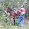 Our muleskinner and his mule.