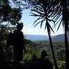 Birdwatching at Los Tarrales Coffee finca.