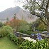 Alan in the restaraunt garden
