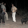 Christian, Eduardo and local guide with orphaned Javelina at Chappari Reserve.