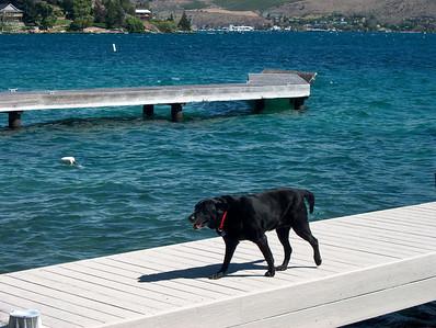 Domke Lake - 2002