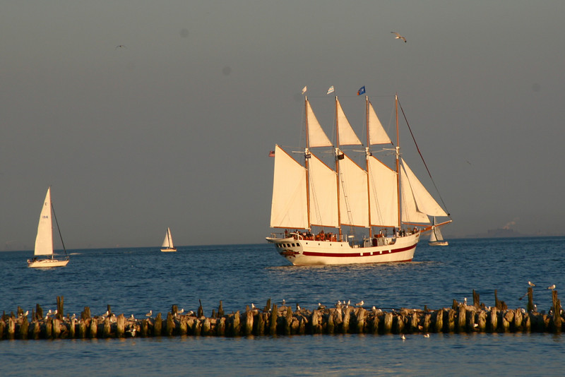 A sail boat from Navy Pier