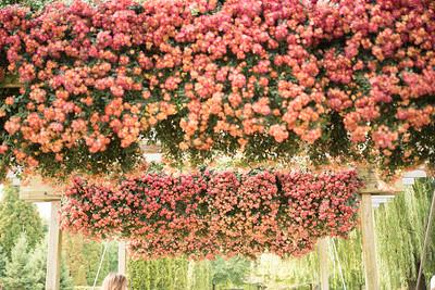 Chicago Botanic Garden 001