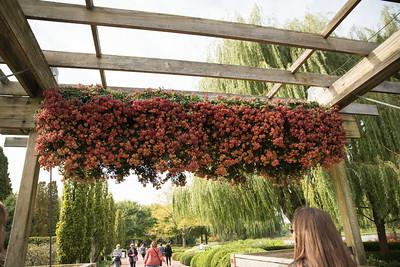 Chicago Botanic Garden 002