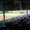 Checking out some of classic Wrigley field.