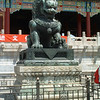 A female lion in front of the Palace of Tranquil Longevity