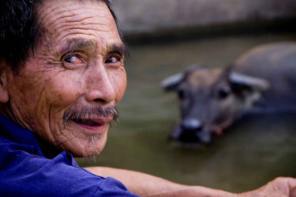 A Man and his Water Buffalo
