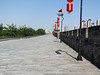 This is the City Wall in Xi'an which is 8 miles in total. Mike and I biked it, thankfully it was mostly flat. But this was probably the sunniest and warmest day we had in China so it was very hot.