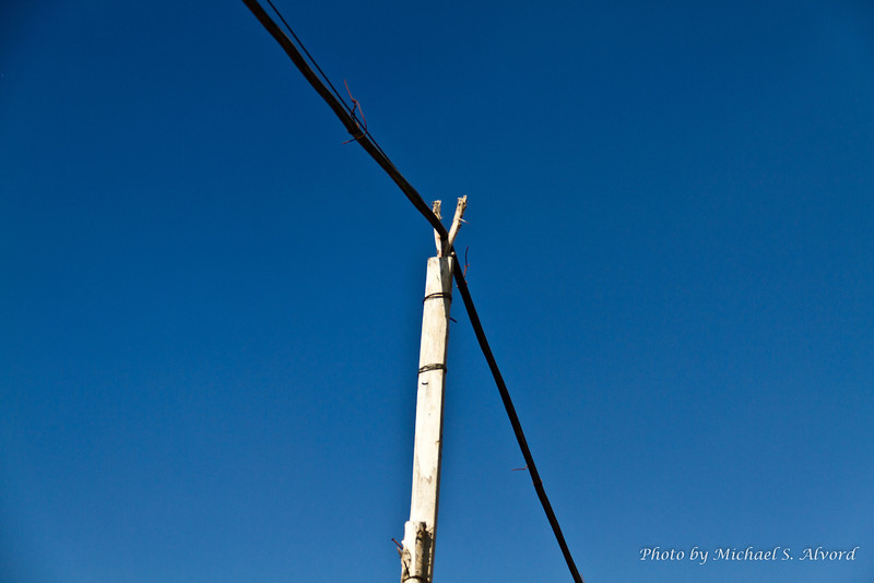 This was a 'telephone' pole  in the park.