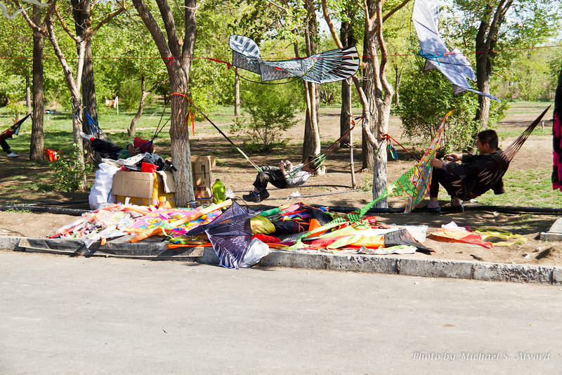 You can purchase kites while you are in the park.