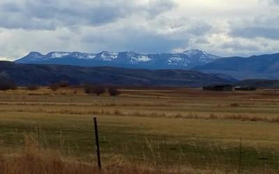 Colorado 2016 AU