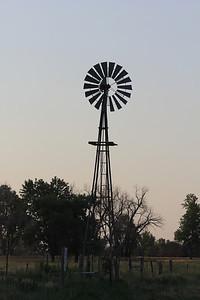 July 6, 2012 (Quivira National Wildlife Refuge [South Sterling Road] / Great Bend, Stafford County, Kansas) --