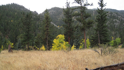 October 12, 2010 - (Rocky Mountain National Park [Cow Creek Trail] / Larimer County, Colorado) -- landscape