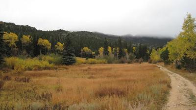 October 12, 2010 - (Rocky Mountain National Park [Cow Creek Trail] / Larimer County, Colorado) -- Trail [landscape]