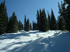 "This and the next four photos are all from the Black Forest trails at Keystone.  They are much like the ""gladed trails"" at Blacomb/Whistler.  Lovely place to ski."
