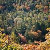Beautiful textures below us, viewing from Brockway Mountain Drive