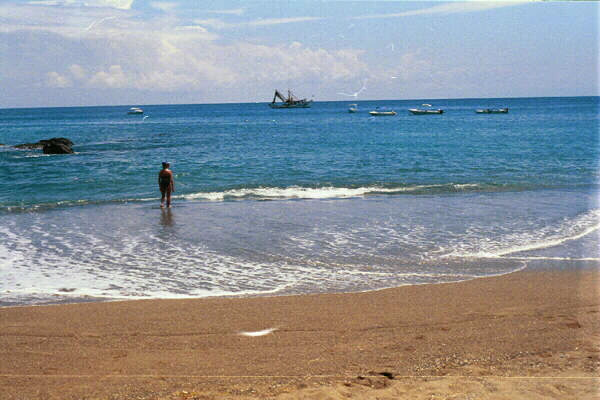 Someone wading in shallow water at the beach.