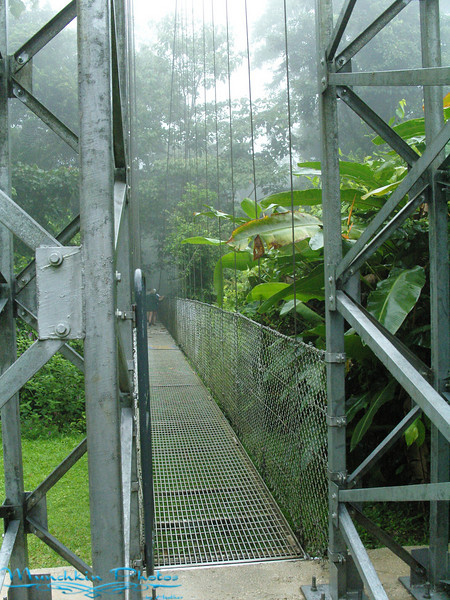 The entrance to the hanging bridges walk.