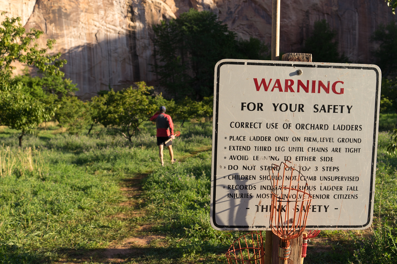 U-Pick fruit from the orchards at Capitol Reef.  Be sure to note the last bullet item.
