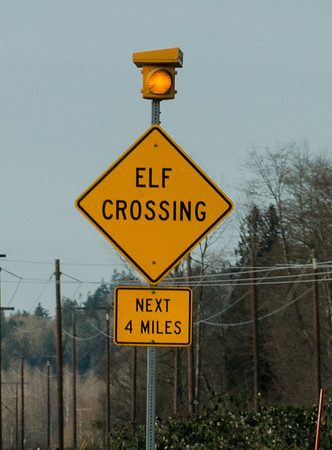 Elf Crossing