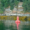 Channel Marker close to shore