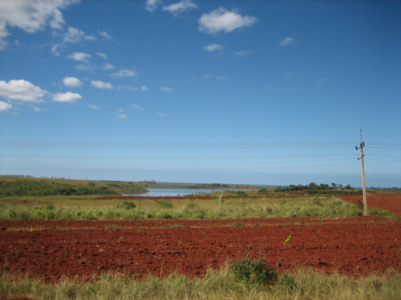 Red iron-rich soil, lots of sugar cane grown here