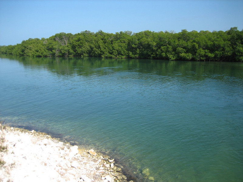 Tide area around the bridge from Cuba to Cayo Las Bruchas