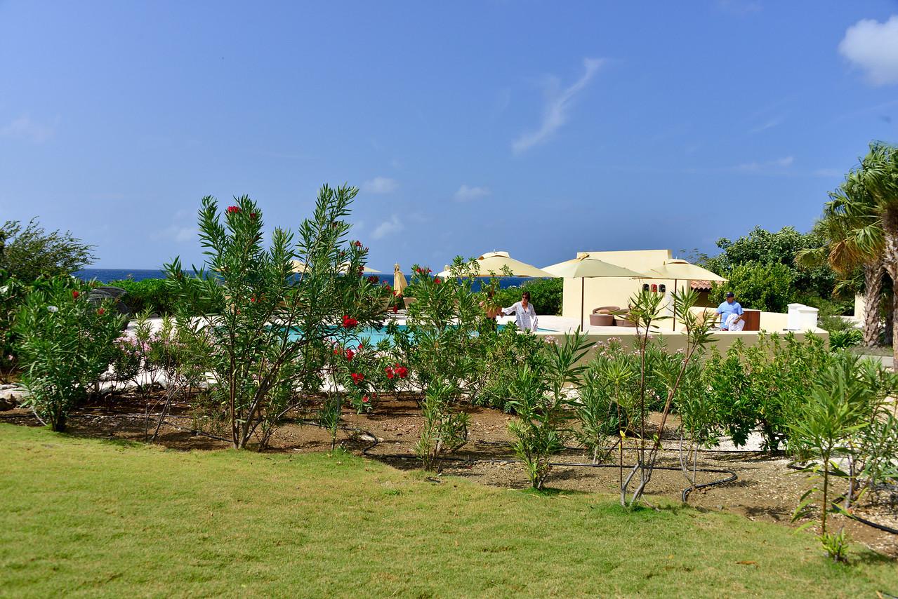 Curacao2013__Mar012013_1248