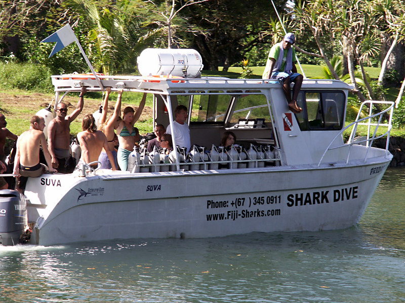Dave, (in the white shirt), on his first shark dive.