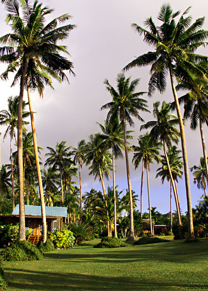 "Our ""Bure"" or bungalow at Makaira by the Sea, Taveuni."