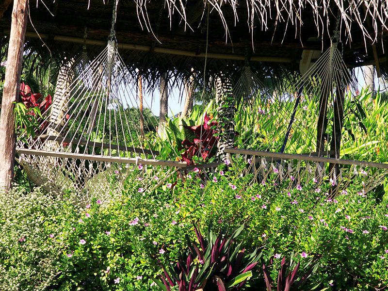 The hammock bure at Makaira by the Sea.