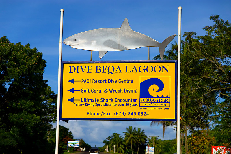 Sign advertising shark diving in Pacific Harbour.