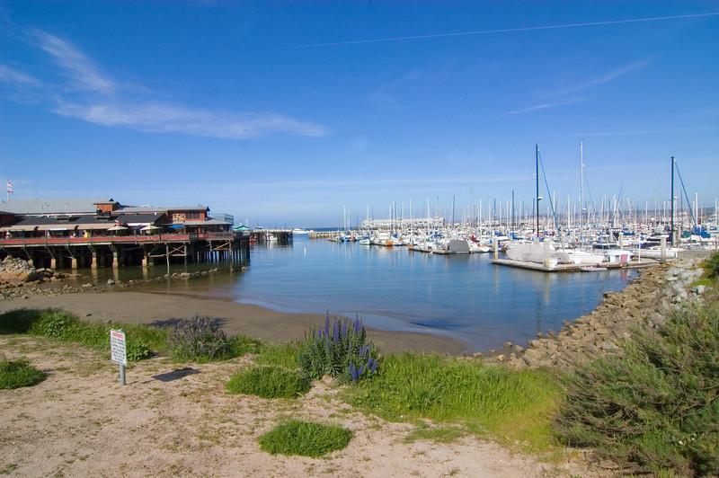 Monterey_2007_04_005