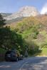 Sequoia_NP_031