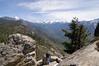 Sequoia_NP_115