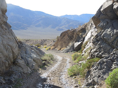"This time, Sherry drove the ""step"" on the downhill ride.  Looking out into Panamint Valley.  03-18, photo by Sherry."