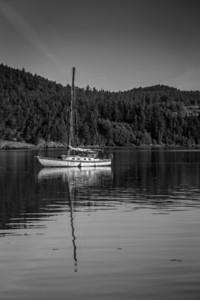 Kind of a grungy looking sailboat out in Cornet Bay.  I thought black and white when I saw it, and some contrast added to make it even more grungy.  I also liked the stillness of the water for the reflection of the sail mask.