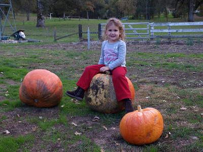 Pumpkin patch Layla.