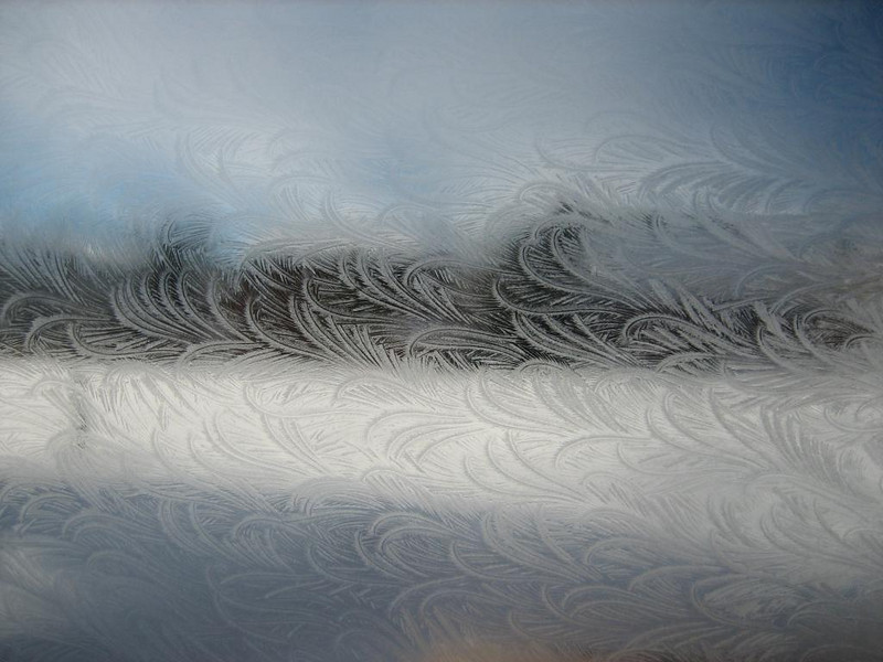 Ice flowers in the double paned glass