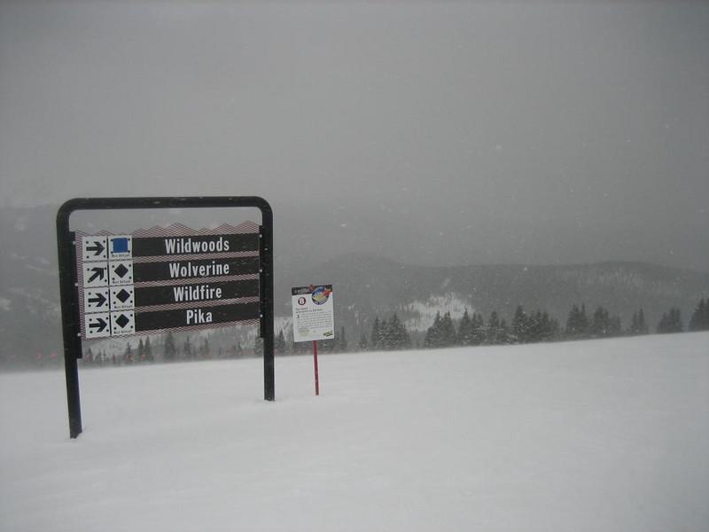Snow storm! Fresh pow pow tomorrow