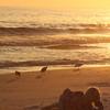 Sunset on Destin Beach.