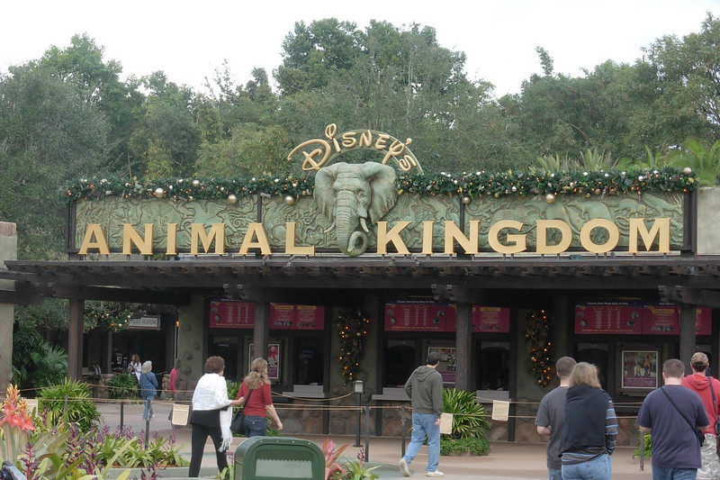 Disney Animal Kingdom 001