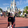 A sleeping princess in front of the Magic Kingdom castle
